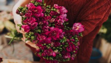 Most Beautiful Flowers Have Beautiful Meanings